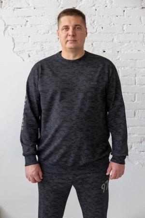 Костюм спортивный мужской, арт 7069